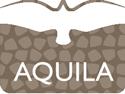 Aquila Design Logo