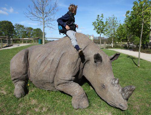 Ree Park – Næsehorn